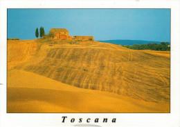 TOSCANA    PAESAGGIO   FOTO STEFANO CAPORALI   MAXI-CARD     (VIAGGIATA) - Italia