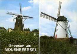 MOLENBEERSEL Bij Kinrooi (Limburg) - Molen/moulin - De Twee Stenen Molens (Zorgvlietmolen En Keijersmolen) - Kinrooi