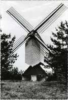 OVERPELT (Limburg) - Molen/moulin - Sevensmolen Of Sint-Odamolen, Kort Na De Verplaatsing En Restauratie Van 1964 - Overpelt