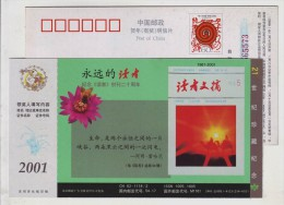 Camel Team,Honeybee Bee Insect,China 2001 Readers Magazine Advertising Postal Stationery Card - Abeilles