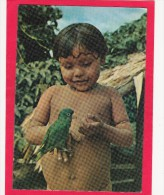 View Of Littel Boy With Bird,Menino Uaika Da Tribo Pukimabueteri Rio Maravia,Brazil,Posted With Stamp, L31. - Other