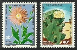 CAMEROUN 1971 FLOWERS CACTI GERBERA SINGLE VALUES NOT A SET MNH - Cameroon (1960-...)