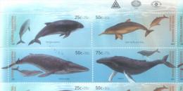 CETACES CETACEOS  MARSOPA ESPINOSA DELFIN DEL RIO DE LA PLATA BALLENA MINKE YUBARTA SERIE COMPLETA YVERT NRS. 2246-2249 - Unused Stamps
