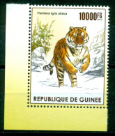 Guinée / Guinea Rép.  2015  ( 1/4) Mnh*** - Big Cats (cats Of Prey)
