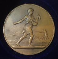 Médaille MINISTERE DE L´AGRICULTURE Par J. Lagrange - Professionnels / De Société