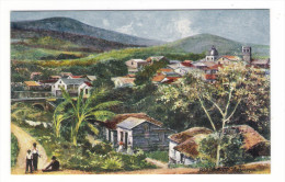 PORTO  RICO  ( PUERTO-RICO ) /  BAYAMON  /  Edit. RAPHAEL TUCK & Sons  /  OILETTE , Serie N° 7725 - Puerto Rico