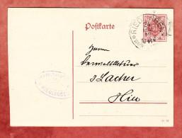Wuerttemberg DP 13/02, Innerhalb Riedlingen 1919 (27118) - Ganzsachen