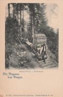 VOSGES   SCHLITTAGE  VOSGES    88  CPA - Thaon Les Vosges