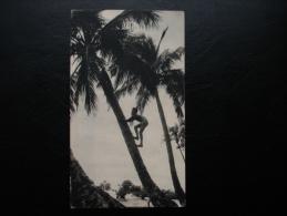 Cpa/pk Publicité - Médecine - Dans Le Sillage De BOUGAINVILLE - Nouvelle Calédonie - Publicité