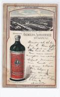 CPA HONGRIE - BUDAPEST - CP Publicité - Etablissement HUNYADI JANOS EAU NATURELLE BOUTEILLE + USINE 1900 - Hongrie