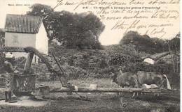 CPA - 215 - UN MOULIN A ECRASER LES GRAINS D´ARACHIDES - PLANTE - SAIGON - PRECURSEUR - EN FONCTION - Vietnam