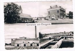 B5699    OOIGEM : Multiview - Wielsbeke