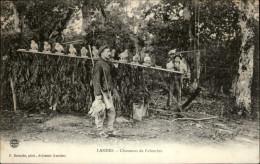 40 - LANDES - Chasseurs De Palombes - France