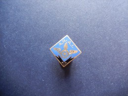 A.N.A.I. - P303 - Pin's
