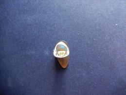 Pin's F.I.A.T. - P307 - Pin's