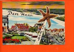 COQ Sur Mer: Den HAAN - De Haan