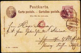 1891. 5 C. NEUCHATEL 3.XII.91 + KINDERPOST.  (Michel: 52) - JF181950 - Non Classés