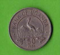 OUGANDA / UGANDA/ FIFTY CENTS / 1966 /   - BEL ETAT - Ouganda