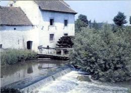 EBEN-EMAEL - Bassenge (Liège) - Molen/moulin/mill - Le Moulin à Eau En 1959 - Image Historique ; De Watermolen In 1959 - Bassenge