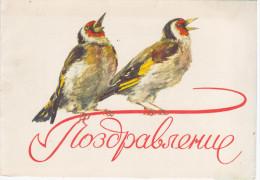 Russia USSR 1958 Telegram  Greeting, Congratulation, Bird Birds Fauna - Rusia
