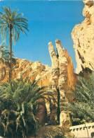 CPM - OASIS - TOZEUR : TUNISIE - Tunisie