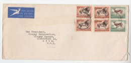 1950s Air Mail SOUTH AFRICA COVER 4x 6d LION  2x 1/3 Stamps To USA  Lions - South Africa (...-1961)