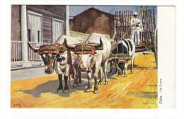 CUBA  /  OX  CARTS  ( Charrette à Boeufs , Attelage Agricole ) /  Edit.  RAPHAEL TUCK & Sons  /  OILETTE , Serie N° 7730 - Cuba