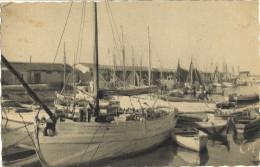 ILE D´OLERON - SAINT TROJAN - Le PORT     130 - Ile D'Oléron
