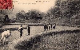 LAOS (ASIE - TONKIN  - Indochine - Viet-Nam - CHINE)  :  Dans La Rivière (HUA PAHN) - Laos