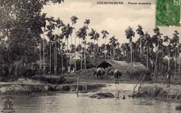VIETNAM    (ASIE - Indochine - Viet-Nam  - TONKIN - CHINE)  : COCHONCHINE Ferme Annamite - Viêt-Nam