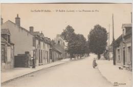 CPSM LA FERTE SAINT AUBIN (Loiret) - SAINT AUBIN : La Pomme De Pin - La Ferte Saint Aubin
