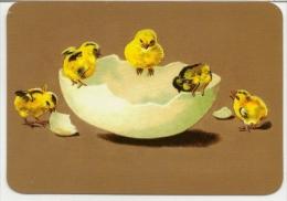 Pocket Calendar Russia - 2010 - Miniature - Shell - Chickens - Advertising - Calendarios
