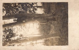 BULT : (88) CARTE PHOTO Repas En Forêt - Non Classés