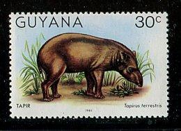 (cl. 3 - P39 ) Guyane ** N° 588 (ref. Michel Au Dos) - Tapir - - Guyana (1966-...)