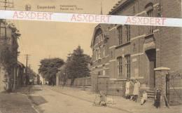 DIEPENBEEK  - VARKENSMARKT   -  Uitgave: H.Koelen-Stulens - Diepenbeek