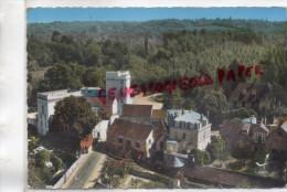 95 - BOISSY L' AILLERIE - LE MOULIN  VUE AERIENNE - Boissy-l'Aillerie