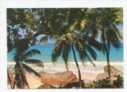 SEYCHELLES - AK 252914 Mahe - Beach View - Seychelles