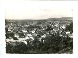 CP - NEUFCHATEAU (88) VUE GENERALE - Neufchateau