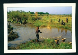 CAMEROON  -  Traditional Fishing  Unused Postcard As Scan - Cameroon