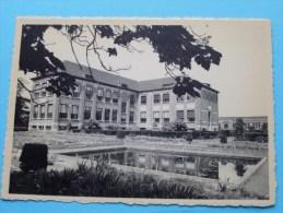 RIJKSTUINBOUWSCHOOL ( Schoolgebouw ) Anno 19?? ( Zie Foto Voor Details ) !! - Vilvoorde