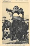 La Mission Du Sacré-Coeur Au Rajpulana - Les Capucins Français Aux Indes - Un éléphant Harnaché - Carte Non Circulée - Missions