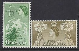 FLORES - BERMUDA 1953/58-  Yvert 135-133  Precio Cat€1 - Pflanzen Und Botanik