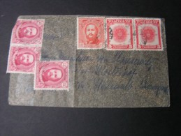 == Paraguay Early Cv. Nice Colors ,, - Paraguay