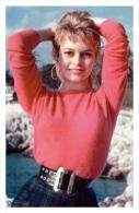 Sexy BRIGITTE BARDOT Actress PIN UP Postcard - Publisher RWP 2003 (157) - Entertainers