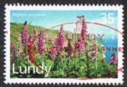 Lundy 1996 Flora 35p Used - Emisiones Locales