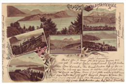 564 - Gruss Vom Vierwaldstättersee - Litho - SZ Schwyz