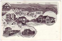 486 - Gruss Aus Ins-Anet - Litho - BE Bern