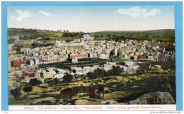 PALESTINE-HEBRON- Beau Plan Vu Des Hauteurs Avec Chèvres Et Chevriers-années 1900-10 - Palestine