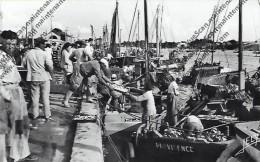 CPSM 85 CROIX DE VIE Pêche Arrivee De La Sardine 1961 TOP - Otros Municipios