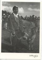 Vache Aubrac - Concours Spécial Race Aubrac, Neuvéglise Louis Raynal Un Lauréat (photo D. Bruges 1991) Cantal Rural N°1 - Autres Communes